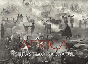 copertina Africa. Ediz. inglese, francese e tedesca