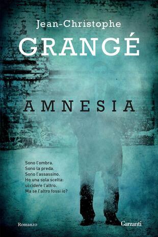 copertina Amnesia