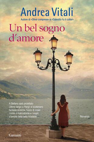 copertina Un bel sogno d'amore