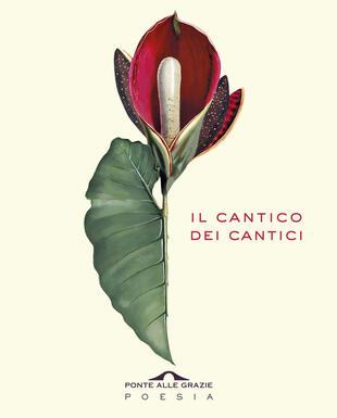 copertina Il Cantico dei Cantici