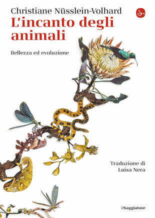 copertina L'incanto degli animali. Bellezza ed evoluzione