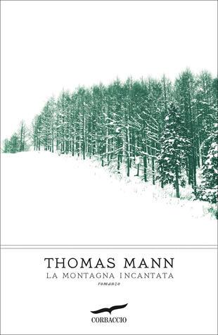 copertina La montagna incantata