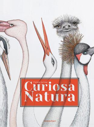 copertina Curiosa natura