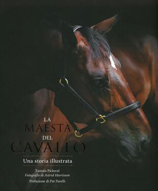 copertina La maestà del cavallo. Una storia illustrata. Ediz. illustrata