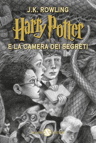 copertina Harry Potter e la Camera dei Segreti